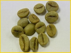 Robusta coffee in high quality. Origin: Vietnam