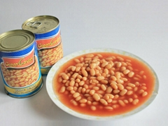 High Quality 400g*24 Canned White kidney  Beans in Tomato Sauce