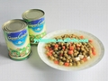 new crop canned mixed vegetable 2