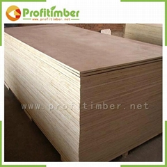 Factory Provide Plywood