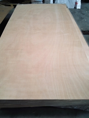 Factory Provide Waterproof BS1088 Marine Plywood for Boat