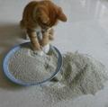 Bentonite Kitty Sand