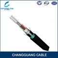 Stranded Loose Tube Cable with Aluminum Tape and Steel Tape (Double Sheaths)