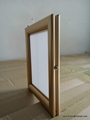 Double Sided poster Frames