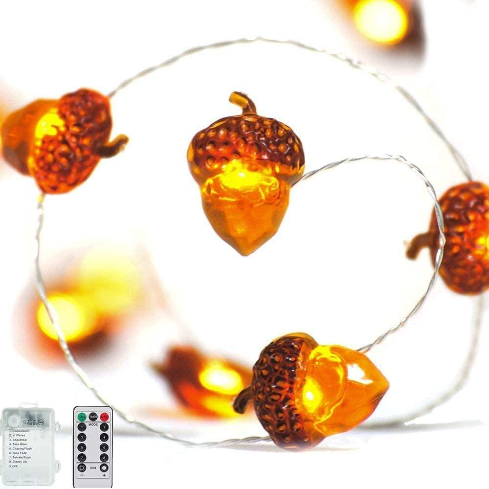 Acorn 10ft Si  er plated copper Wire 40 LED bulbs 2