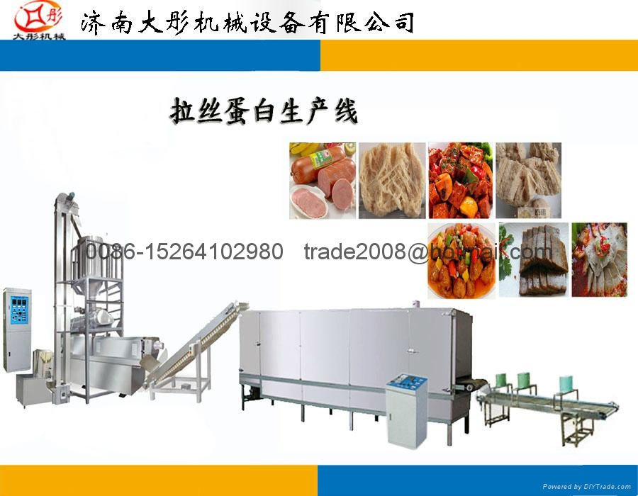 Textured Soya Protein Processing Line 3