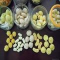 膨化休闲食品生产线 4