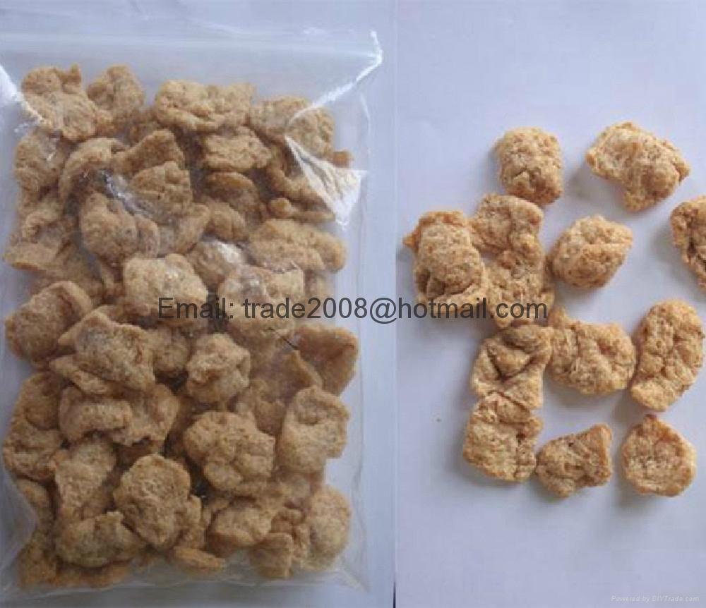 膨化大豆蛋白食品加工设备 4
