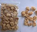 膨化大豆蛋白食品加工設備 4