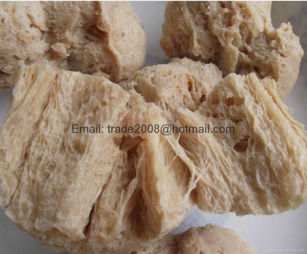 膨化大豆蛋白食品加工設備 5