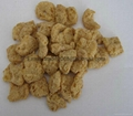 膨化大豆蛋白食品加工设备 16