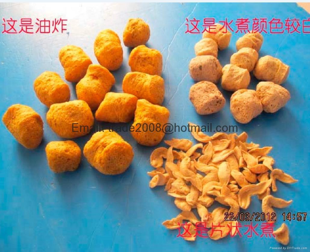 膨化大豆蛋白食品加工设备 12