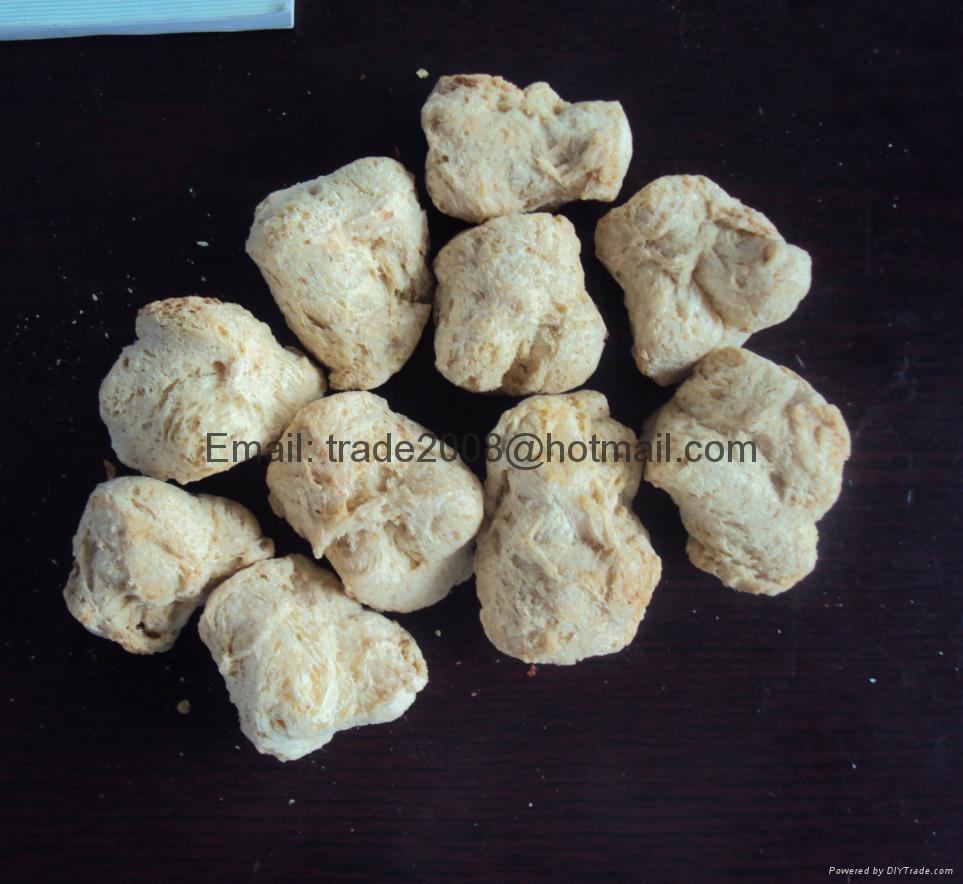 膨化大豆蛋白食品加工設備 10