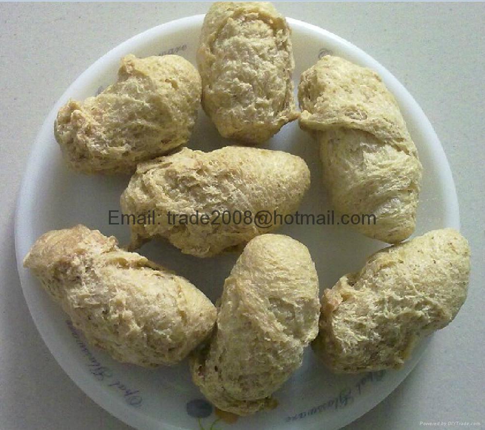膨化大豆蛋白食品加工設備 7