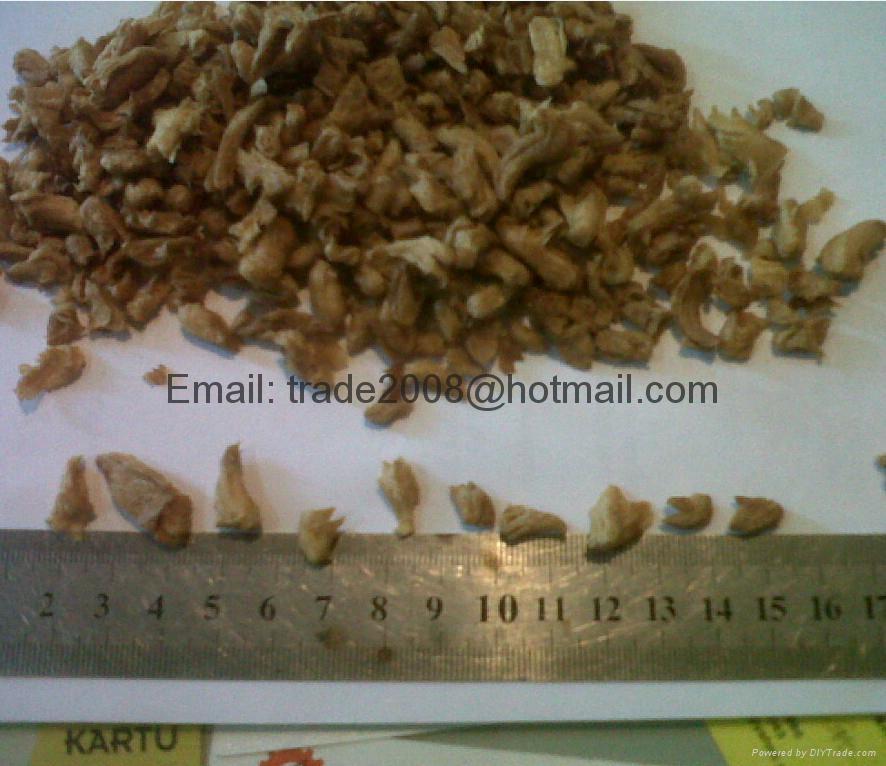 大豆拉丝组织蛋白加工设备 4