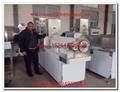 Fish Food Pellet Extruder plant