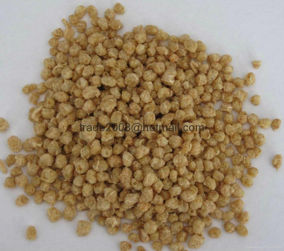 Textured Soya Protein Processing Line 8