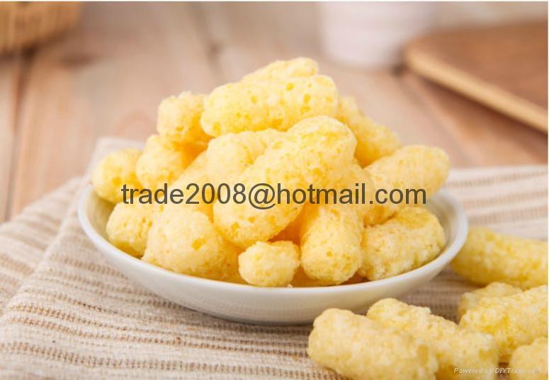 休闲玉米食品生产设备 12