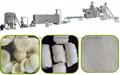 變性澱粉生產設備 4