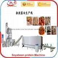 大豆拉丝蛋白生产设备 2