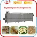 大豆拉丝蛋白生产设备 4