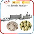 組織蛋白生產線 10