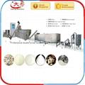 預糊化變性澱粉加工設備 1