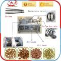 实验型双螺杆挤压膨化机 6