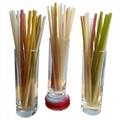 大米吸管食品生產設備 8