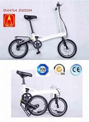 Folding electric bike TDR13Z-F