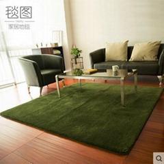 可水洗丝毛绒纯色客厅地毯地垫