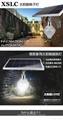 鑫碩聯創太陽能蘋果燈xslc-pgd-1001 5