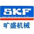 SKF進口軸承 1