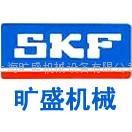 SKF進口軸承
