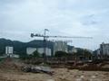 hot--selling of TC5023 tower crane(F0/23B)