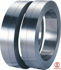 Stainless Steel Strips/B