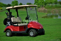 2 seats electric golf cart with DC motor