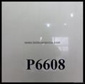 POLISHED  TILE   P6608