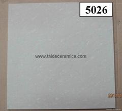 polished tile         500x500mm