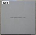 Soluble Salt Porcelain Floor Tiles 400*400mm 4102