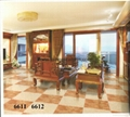 Hot Sell High Quality Ceramic Tiles ,Rustic Tiles   600x600mm  6611