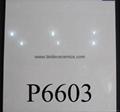 White Soluble Salt Porcelain Tiles    P6612