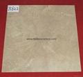 Hot Sell 6D Inkjet Semi Polished Glazed Tiles Flooring Tiles 60*60cm