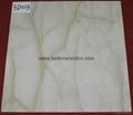New Design 6D Inkjet Printing Glazed porcelain tiles 600*600mm  6D025