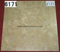 Ceramic Tile  600*600mm  E6167 2