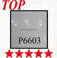 POLISHED TILE    P6603