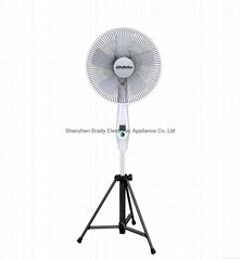 14 Inch Stand Fan FS7413 DC Brushless Motor Electric Fan in stock