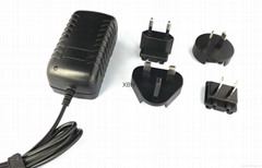 4.2V1A转换插脚锂电池充电 器