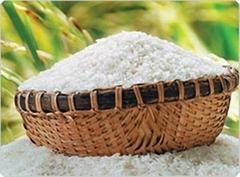 Vietnam White Long Grain Rice 10% Broken Best Price