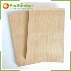 1220*2440mm or Customized Natural Wood Blockboard